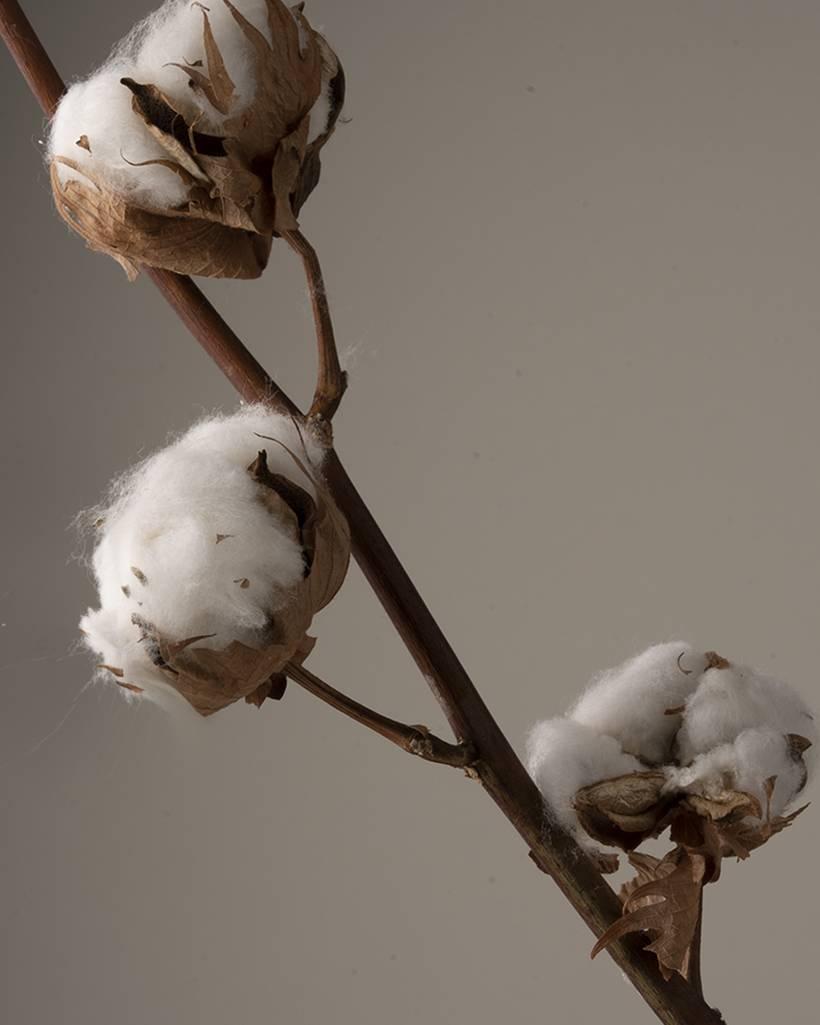 Tissu Lavable Tissus Coton Reutilisables avec Filtre Rempla/çable Homme et Femme Couleur Unie Sport Ext/érieur Unisexe Bandanas KW-16